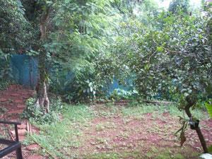 Iguazu Hostel Yard