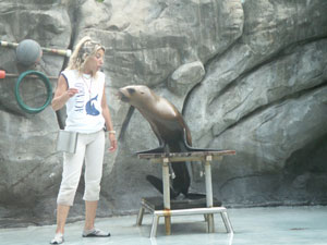 Buenos Aires Zoo Seal Show
